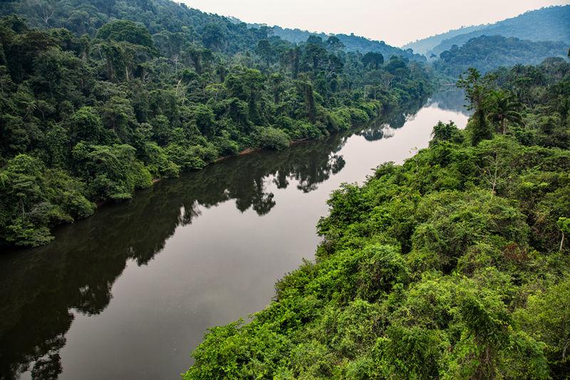Un voyage en Amazonie, c'est comment ?